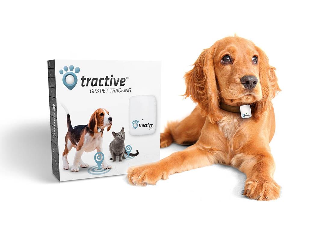 Dispozitiv localizare GPS pentru caini si pisici Tractive